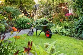 Gardening contractor in brighton